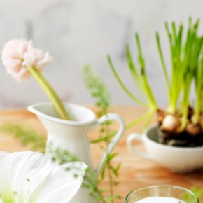 A cheat-treat: bring a little Spring indoors