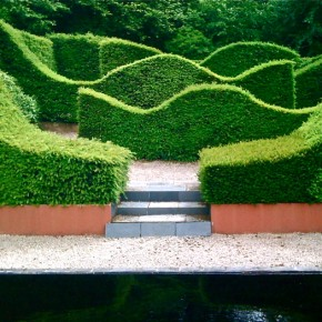 The thinking woman's garden