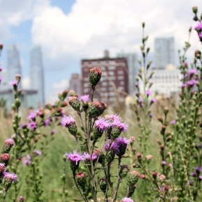 London wants a piece of the Highline life