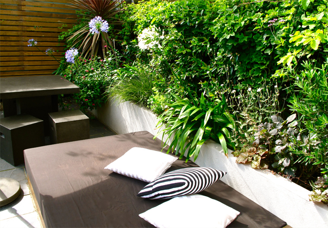 sun trap garden styleseed