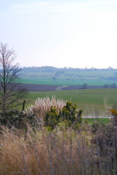 hyde spring view