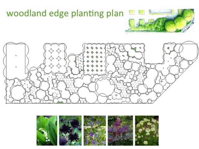 planting design styleseed