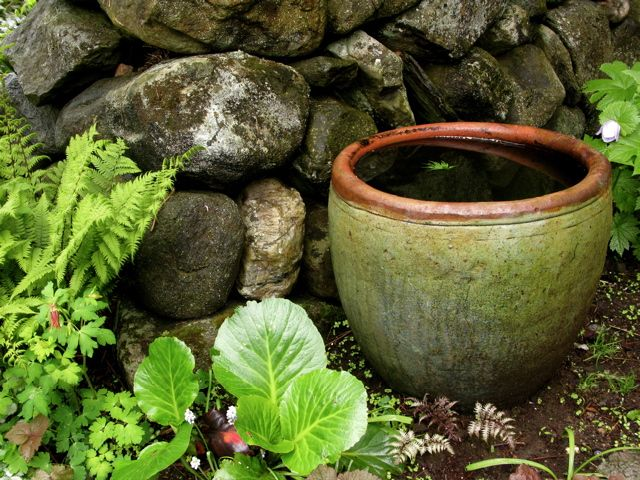 water pot in corner