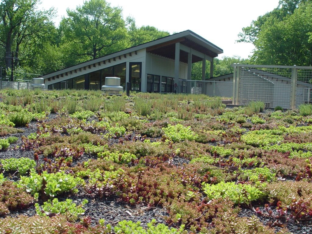 A Green Living Roof Styleseed